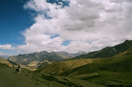 ladakh (278)