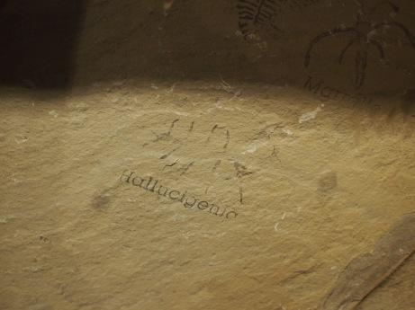 the cambrian gave rise to some extraordinary lifeforms. google hallucigenia.