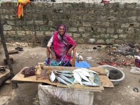 Life at the margins. A fish market at Veraval, Gujarat