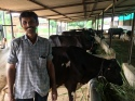Dairy farmer at Banaskantha, Gujarat. See these two reports on the fraying milk cooperative which supports them. https://scroll.in/article/858576/the-amul-story-how-politics-is-hurting-the-economics-of-gujarats-milk-cooperatives and https://scroll.in/article/858585/amul-is-now-a-congress-mukt-federation-how-bjp-took-control-of-indias-largest-milk-cooperative