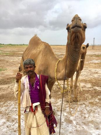 At the Rann of Kutch, Gujarat