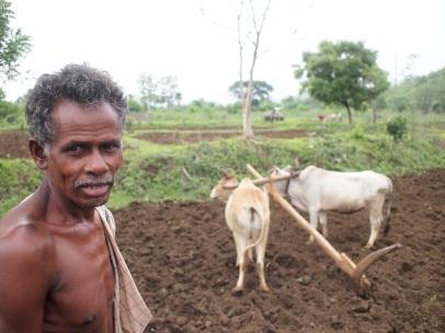 A farmer in Kalahandi, Odisha (https://scroll.in/roving/211/in-odisha-farmers-are-still-growing-food-the-hard-way)